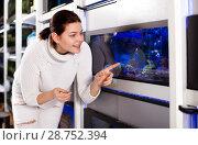 Купить «Girl in aquarium shop points to colored fish», фото № 28752394, снято 17 февраля 2017 г. (c) Яков Филимонов / Фотобанк Лори
