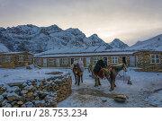 Купить «At the base camp at the Thorong La pass on April 7, 2018, on the track around Annapurna, Nepal», фото № 28753234, снято 7 апреля 2018 г. (c) Валерий Смирнов / Фотобанк Лори