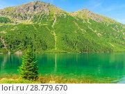 Купить «quiet beautiful mountain lake Morskie Oko in the summer sunny day», фото № 28779670, снято 18 августа 2017 г. (c) Константин Лабунский / Фотобанк Лори
