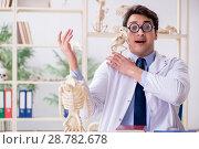 Купить «Funny crazy professor studying animal skeletons», фото № 28782678, снято 7 марта 2018 г. (c) Elnur / Фотобанк Лори