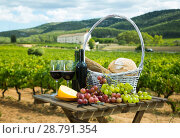 Купить «Red wine with basket», фото № 28791354, снято 25 мая 2019 г. (c) Яков Филимонов / Фотобанк Лори