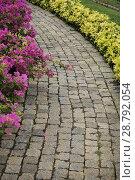 Купить «Мощеная камнем дорожка в сквере», фото № 28792054, снято 20 июля 2018 г. (c) Александр Романов / Фотобанк Лори