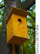 Купить «birdhouse on the tree», фото № 28797854, снято 31 августа 2017 г. (c) Guru3d / Фотобанк Лори