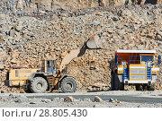 Купить «Granite mining. Wheel loader loading ore into dump truck at opencast», фото № 28805430, снято 8 сентября 2016 г. (c) Дмитрий Калиновский / Фотобанк Лори