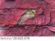 Старая кирпичная стена окрашенная много раз. Облупившаяся краска. Текстура. Фон. Стоковое фото, фотограф Алёшина Оксана / Фотобанк Лори