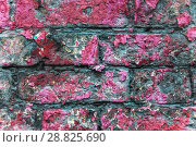 Купить «Старая кирпичная стена. Облупившаяся краска. Фон. Текстура», фото № 28825690, снято 24 июля 2018 г. (c) Алёшина Оксана / Фотобанк Лори