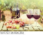 Купить «glass of red wine ripe grapes and bread in vineyard», фото № 28826202, снято 11 сентября 2017 г. (c) Татьяна Яцевич / Фотобанк Лори
