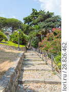 Купить «Path in the city park of San Remo, Italy», фото № 28826462, снято 9 июля 2018 г. (c) Григорий Стоякин / Фотобанк Лори