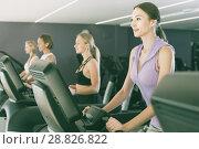 Купить «Slender athletic girls running on treadmill in fitness club», фото № 28826822, снято 26 июля 2017 г. (c) Яков Филимонов / Фотобанк Лори