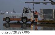 Купить «Vehicle driving to take the cargo from airplane», видеоролик № 28827006, снято 4 октября 2017 г. (c) Данил Руденко / Фотобанк Лори