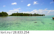 Купить «lagoon at tropical beach in french polynesia», видеоролик № 28833254, снято 1 июля 2018 г. (c) Syda Productions / Фотобанк Лори