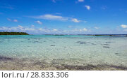 Купить «lagoon at tropical beach in french polynesia», видеоролик № 28833306, снято 1 июля 2018 г. (c) Syda Productions / Фотобанк Лори