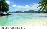 Купить «tropical beach and bungalows in french polynesia», видеоролик № 28833310, снято 1 июля 2018 г. (c) Syda Productions / Фотобанк Лори