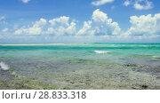 Купить «lagoon at tropical beach in french polynesia», видеоролик № 28833318, снято 1 июля 2018 г. (c) Syda Productions / Фотобанк Лори