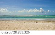 Купить «lagoon at tropical beach in french polynesia», видеоролик № 28833326, снято 1 июля 2018 г. (c) Syda Productions / Фотобанк Лори