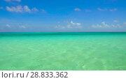 Купить «lagoon at tropical beach in french polynesia», видеоролик № 28833362, снято 1 июля 2018 г. (c) Syda Productions / Фотобанк Лори