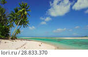 Купить «tropical beach with palm trees in french polynesia», видеоролик № 28833370, снято 1 июля 2018 г. (c) Syda Productions / Фотобанк Лори