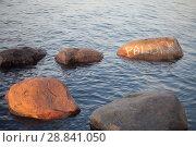 Побережье Балтийского моря в Эстонии на закате в солнечный день. Стоковое фото, фотограф Victoria Demidova / Фотобанк Лори