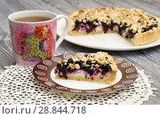 Творожный пирог с черникой и орехами. Стоковое фото, фотограф Dmitry29 / Фотобанк Лори