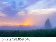 Купить «Летний туманный пейзвж», фото № 28859646, снято 30 июля 2018 г. (c) Икан Леонид / Фотобанк Лори
