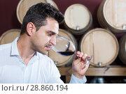 Купить «Customer holding glass of red wine and tasting in winery section», фото № 28860194, снято 20 октября 2018 г. (c) Яков Филимонов / Фотобанк Лори