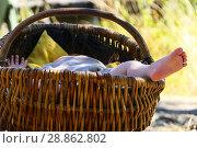 Купить «Björkö, Sweden. A Viking baby at the Viking settlement of Birka (9th-10th c. ) in Lake Mälaren.», фото № 28862802, снято 15 июля 2018 г. (c) age Fotostock / Фотобанк Лори