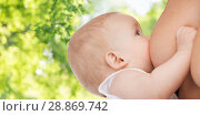 close up of baby sucking mother breast. Стоковое фото, фотограф Syda Productions / Фотобанк Лори