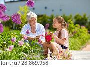 Купить «grandmother and girl planting flowers at garden», фото № 28869958, снято 3 июня 2018 г. (c) Syda Productions / Фотобанк Лори