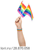Купить «hand with gay pride rainbow flags and wristband», фото № 28870058, снято 2 ноября 2017 г. (c) Syda Productions / Фотобанк Лори