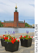 Купить «Stockholm City Hall (1923), building of Municipal Council for City of Stockholm, on background of flower beds», фото № 28875634, снято 9 июля 2018 г. (c) Валерия Попова / Фотобанк Лори