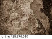 Купить «Illustration of cementic background with stones», фото № 28876510, снято 17 августа 2018 г. (c) Яков Филимонов / Фотобанк Лори