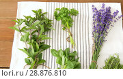 Купить «greens, spices or medicinal herbs on table», видеоролик № 28876810, снято 17 июля 2018 г. (c) Syda Productions / Фотобанк Лори