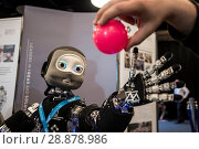 Купить «'Nikita' the robots name is an I Cub that is able to track objects and react, on show from Edinburgh centre of Robotics at Heririot Watt University at...», фото № 28878986, снято 22 марта 2017 г. (c) age Fotostock / Фотобанк Лори