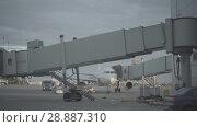 Купить «Luggage loading track at the Pulkovo airport in Saint-Petersburg», видеоролик № 28887310, снято 6 июня 2018 г. (c) Ирина Мойсеева / Фотобанк Лори