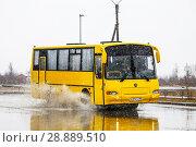 Купить «KAvZ 4230 Avrora», фото № 28889510, снято 31 мая 2016 г. (c) Art Konovalov / Фотобанк Лори