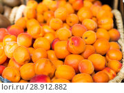 Купить «appetizing apricots in wicker baskets on counter in market», фото № 28912882, снято 26 мая 2018 г. (c) Татьяна Яцевич / Фотобанк Лори