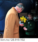 Купить «Prince Charles visited the historic town of Clitheroe, Lancashire. he walked up the main high street where there was a food market selling local produce...», фото № 28919102, снято 21 марта 2017 г. (c) age Fotostock / Фотобанк Лори