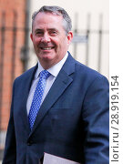 Купить «Dr Liam Fox, Secretary of State for International Trade and President of the Board of Trade, leaving the weekly cabinet meeting at 10 Downing Street in...», фото № 28919154, снято 21 марта 2017 г. (c) age Fotostock / Фотобанк Лори