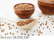 Купить «Whole buckwheat grain», фото № 28935530, снято 16 апреля 2018 г. (c) Надежда Мишкова / Фотобанк Лори