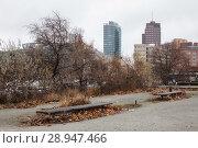 Купить «Berlin, Germany, free spaces between Kulturforum and Potsdamer Strasse in Berlin-Tiergarten», фото № 28947466, снято 28 декабря 2016 г. (c) Caro Photoagency / Фотобанк Лори
