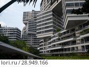 Купить «Singapore, Republic of Singapore, The Interlace», фото № 28949166, снято 14 декабря 2017 г. (c) Caro Photoagency / Фотобанк Лори