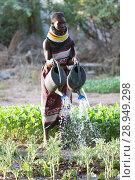 Купить «Kakuma, Kenya - Gardening in Kakuma refugee camp, managed and funded by GIZ / UNHCR.», фото № 28949298, снято 31 августа 2015 г. (c) Caro Photoagency / Фотобанк Лори