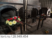 Купить «Poland, Pomerania, Concentration Camp Memorial Museum Stutthof», фото № 28949454, снято 26 августа 2015 г. (c) Caro Photoagency / Фотобанк Лори