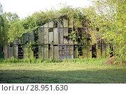 Купить «Hamburg, Germany, dilapidated and overgrown with plants warehouse», фото № 28951630, снято 13 мая 2017 г. (c) Caro Photoagency / Фотобанк Лори