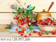 Купить «Sprigs of fresh ripe garden strawberries and berries in a wicker bowl on a wooden table on a summer day. Rustic still life», фото № 28957266, снято 8 июля 2018 г. (c) Виктория Катьянова / Фотобанк Лори