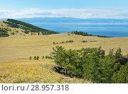 Купить «Baikal Lake in the summer. Typical for Olkhon Island is a steppe landscape with little copse of larch trees. A soil road leads to Khoboy Cape», фото № 28957318, снято 21 августа 2010 г. (c) Виктория Катьянова / Фотобанк Лори