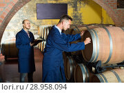 two men in uniforms taking notes in cellar with wine woods. Стоковое фото, фотограф Яков Филимонов / Фотобанк Лори