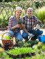 Купить «Elderly couple gardening in the backyard», фото № 28958134, снято 16 августа 2018 г. (c) Яков Филимонов / Фотобанк Лори