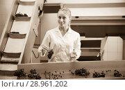 Купить «smiling female winery worker at sorting line», фото № 28961202, снято 21 сентября 2016 г. (c) Яков Филимонов / Фотобанк Лори