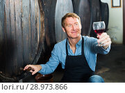 Купить «friendly seller man suggesting to try glass of wine in wine cellar», фото № 28973866, снято 23 октября 2018 г. (c) Яков Филимонов / Фотобанк Лори